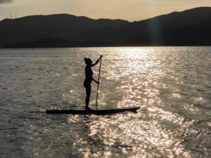 woman paddling boarding at sunset