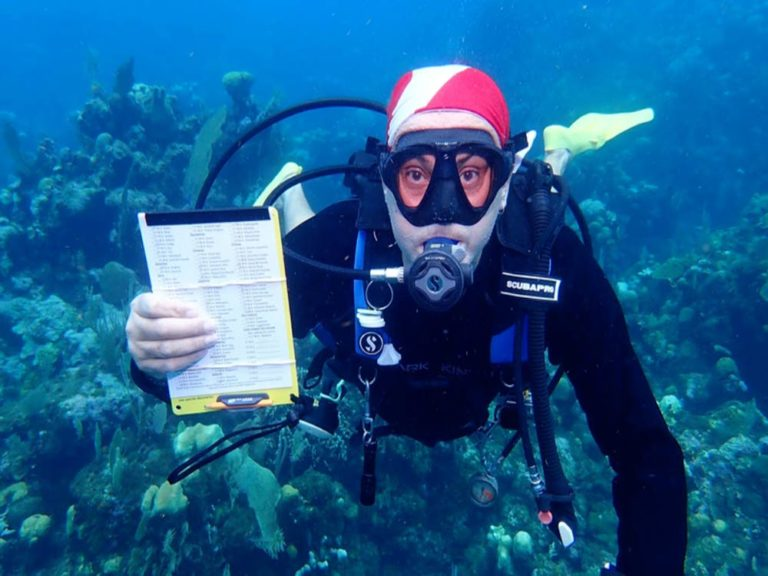 Diver conducting a reef survey